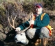 Hunting mule deer in Wyoming 2004