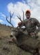 Chris O Sullivan with a great Wy. Mule Deer 2012